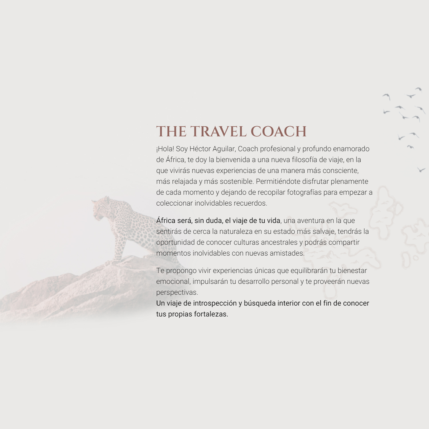 The Travel Coach